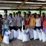 Provision of rice seeds