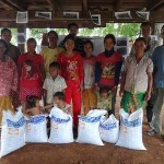 Providing the rice seed at Gartie village