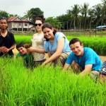 03. Tourists working with the community transplanting rice