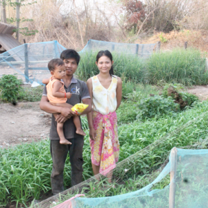 How vegetable growing training has been the key of development  in Koh Ent Chey