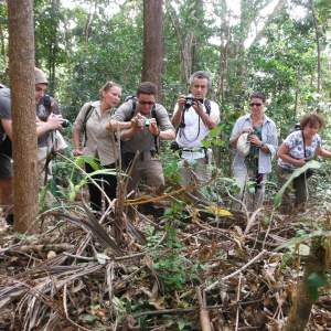 Farm Businesses Support Gibbon Watching Ecotourism in Seima Protection Forest